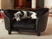 Hundebett als Sofa